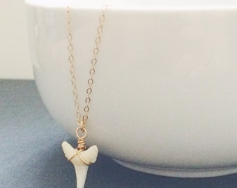 White Shark Tooth Layering Necklace - Genuine Wired Shark Tooth, Sterling Silver or 14k Gold Filled Chain, Layering Jewelry, Gifts For Her