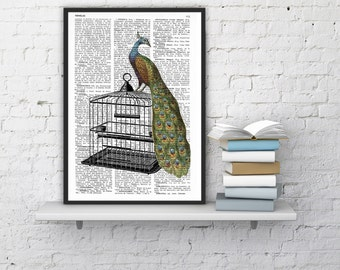 Summer Sale Peacock over cage print on Vintage Dictionary Book altered art dictionary page illustration book print ANI150