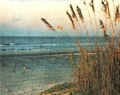Grasses, Florida Beach, Ocean, Photography Print, 5x7 + More Sizes, Waves, Blue, Sunrise, Sand, Dawn, Wall Art, Home Decor
