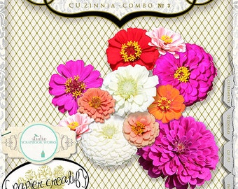 Zinnia Flower Collection by Papier Creatif CU OK
