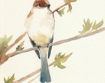 Watercolor Bird, Blue and Yellow Spring Bird on a Branch, 8x10, Original Watercolor Painting, bird wall art