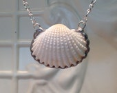 Cockle Shell Necklace Soldered Sea Shell Pendant Christmas Birthday Gift Statement Necklaces Real seashells