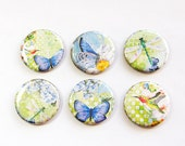 Butterfly Magnets, Hummingbird magnets, Nature Magnets, button magnets, Butterflies, Hummingbird, Kitchen Magnets, stocking stuffer (3268)