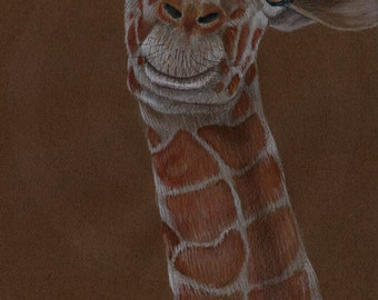Reticulated Giraffe Original Drawing