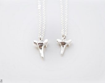 Dipped in Sterling Silver Shark Tooth Necklace
