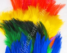 Craft Pack, rooster feathers, rainbow, MIX, 6 colors, bulk, wholesale, earring feathers, per pack