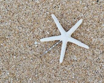 Single White Mermaid Starfish Bobby Hair Pin Accessories - Bridal Accessories, Wedding Hair Clip, Beach Wedding, Mermaid Hair Accessories