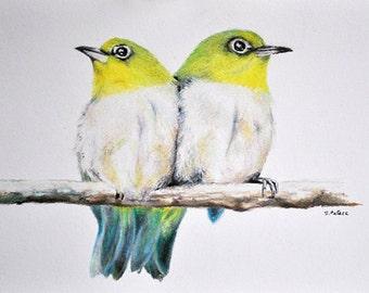 Two Birds - Original Colored Pencil Bird Drawing 5.5x8 inch, bird art