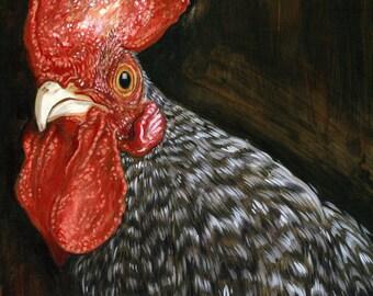 Scots Grey Chicken print