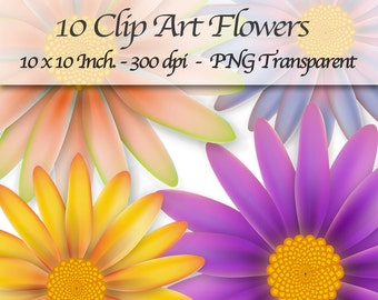 10 Clipart Flowers PNG Transparent. 10 x 10 Inch. 300 DPI