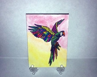 ACEO Art Card-Macaw