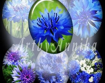 Digital Collage of Сornflowers  - 36 30 x 40mm JPG images