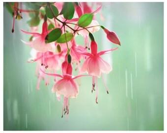 Spring art, mint fuchsia poster, large wall art, botanical photography, 16x20, pink flowers romantic fresh home decor, 24x30, 12x12 print