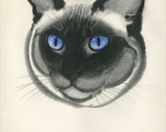 Vintage Siamese Cat Print   C.1944 Clare Turlay Newberry Matted 12x16""