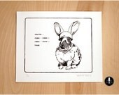 CARROT, Limited edition hand-pulled screen print of rabbit sending military alphabet message, black and white graphic, art for all ages