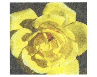 Yellow rose photo transfer print, hand printed image transfer print