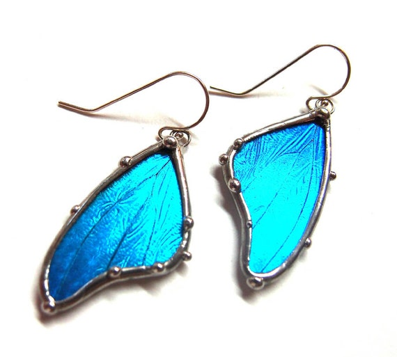 Blue Morpho Butterfly Wing Earrings - Real Butterfly Jewelry