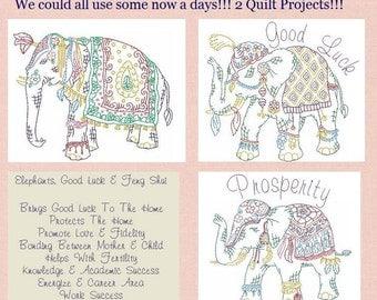 Luck of The Elephants