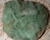 Hand Dyed Samoyed wool for spinning / Forest / 1 ounce