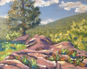 Original Oil Landscape Plein Air Painting, Taum Sauk Rocky Outcropping, impressionist colorful fine art
