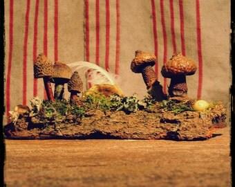 Faery Mushroom Garden in Natural Materials