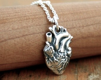 Anatomically Correct Human Heart Necklace - Sterling Silver