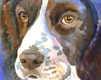 Springer Spaniel Art Print of Original Watercolor Painting 8x10