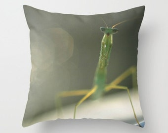 Praying Mantis Pillow Cover Entomology Insect Natural History Sweetest Things Green Mantis Love Nature Print