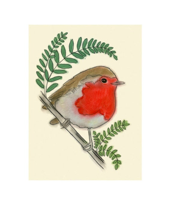 "Robin Bird Art -  Roland the Robin 4 for 3 SALE (4"" X 6"" print)"