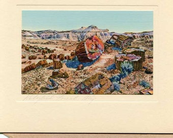 Vintage 1940's Petrified Forest AZ  Chromo Print Photograph, Mint in the Envelope, W Nutting Style