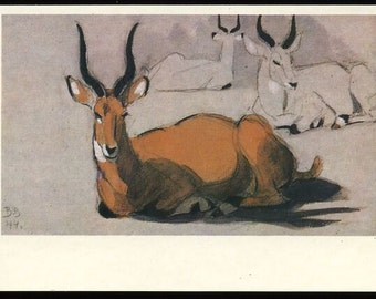Antelope post card, V. Vatagin artist  vintage postcard vintage postcard, SharonFosterVintage