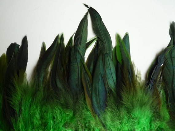 COQUE FEATHERS, Exquisite Quality  / Iridescent Spring Green / 131