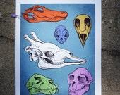 "Skulls Print 11.25"" x 14.5"""