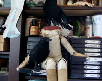 Gothic Raven Black Bird One Large CrEepY Old Black Crow