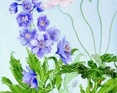 Delphiniums: Gabby Malpas watercolour C6 greeting card and envelope