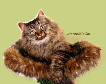 """LUXURY CAT BED 9"""" High Loveland,  Modern Cat Bed, Unique Cat Trees Tree, Luxury Cat Beds, Fancy Cat Trees, Majestic Cat Furniture, Sturdy"""