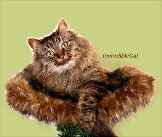 Best cat beds modern cat tree unique custom cat by for Designer cat beds uk
