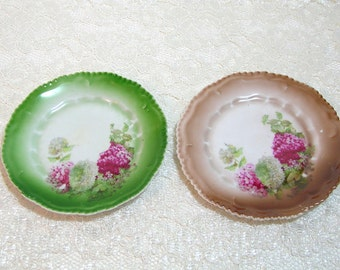 Vintage China Plates With Hydrangeas