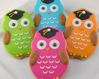 Graduation Owl Cookies - 12 Decorated Sugar Cookie Favors