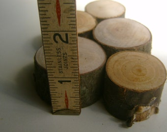 75 Miniature Tree Stumps Assorted Wood Grains DIY Gnome Home Supply