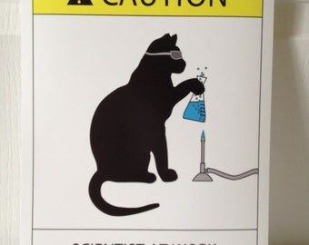 Cat Scientist - Boiling Flask - 16x20 Poster