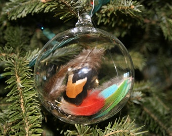 Hand Blown Ornament - Handblown Glass Christmas Ball - Feather Ornament Bird Gift- Christmas Gift