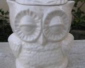 Glazed Small Owl Kitchen Jar