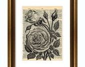 8 x 10 Peony Flower Vintage Dictionary Print