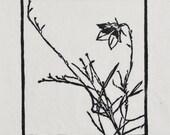 Harebell, handmade woodblock print on Japanese Sekishu paper