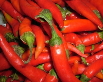 Ring Of Fire Hot Pepper Seeds