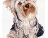 Yorkshire terrier necktie