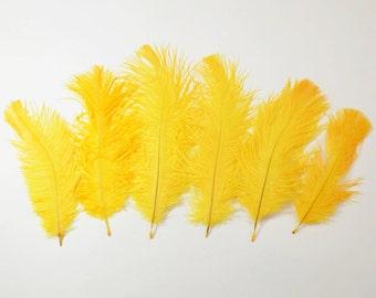 "Petite Ostrich Drab Feathers - Mango, 4-8"" (6pcs)"