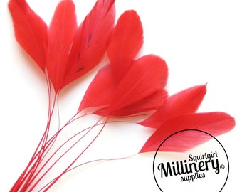 Stripped Coque Feather Hat Mount Red (10 Feathers) for Millinery & Fascinators