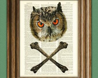 Naughty Owl and Crossbones illustration Dictionary Page book art print cross bones